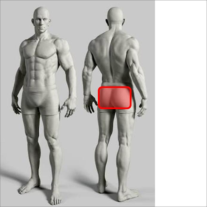 ヒップスラスト~大臀筋を集中的に鍛えるたためのとっておきのトレーニング