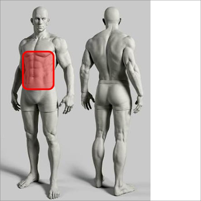 ドラゴンフラッグ~自宅で出来る超負荷の高い体幹トレーニング